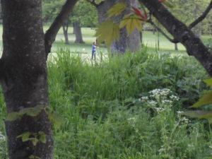 lodge orienteering 051