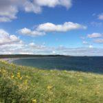 Barns Ness near Dunbar  Saturday 24th June