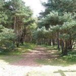 John Muir Country Park, Dunbar  Saturday 26 June 2021